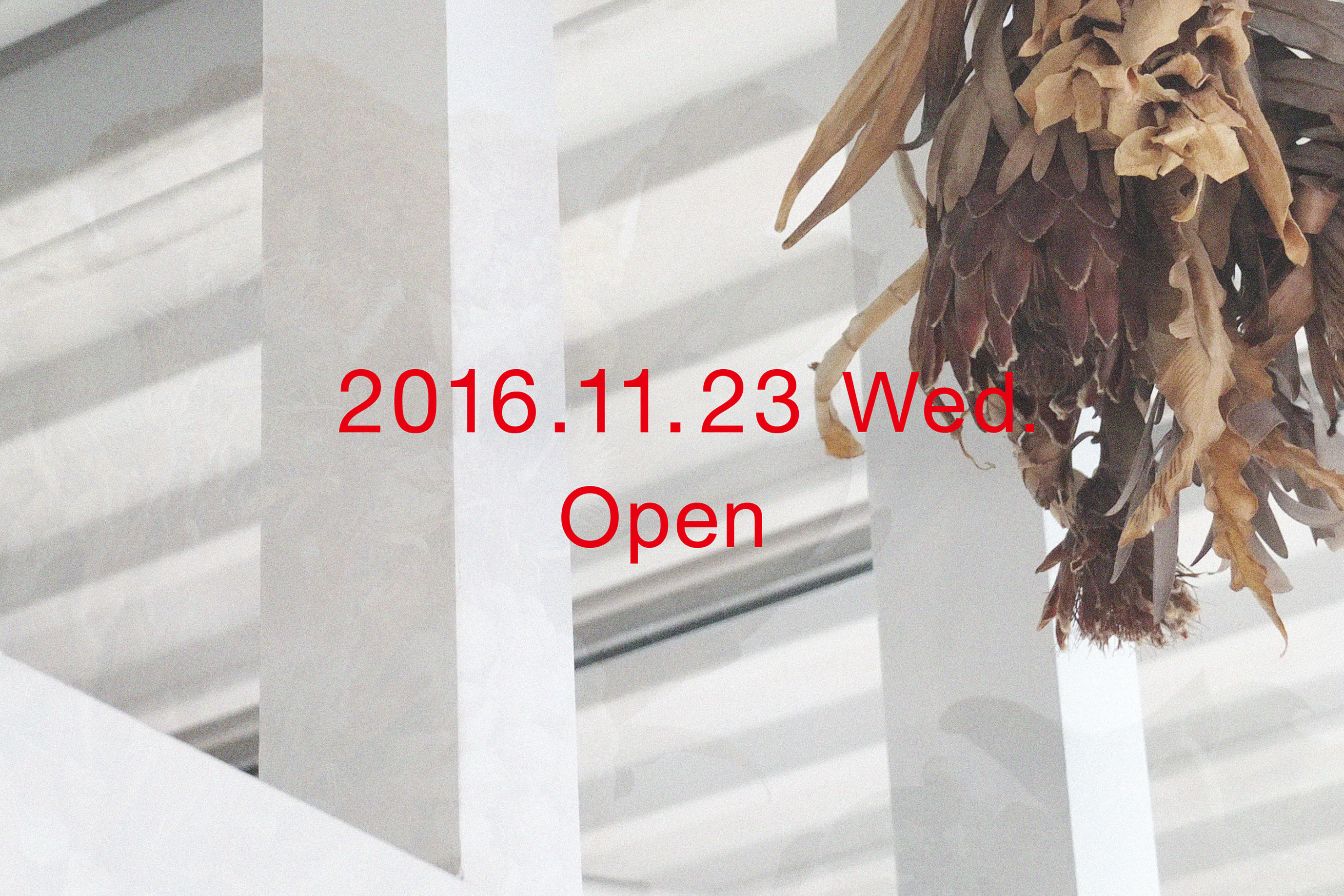 ss-open_20161123
